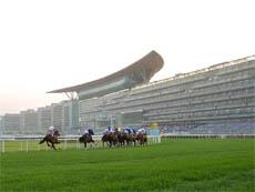 Гонки на Meydan - 2012/2013 сезон